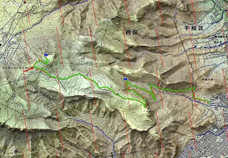 初めての夏道登頂「ネオパラ山」