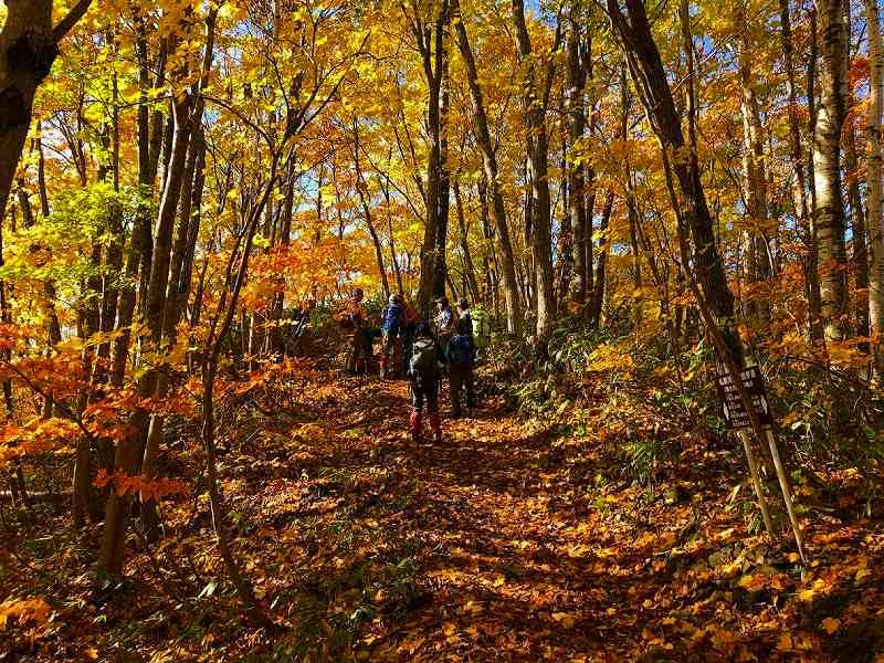 紅葉に彩られた砥石山